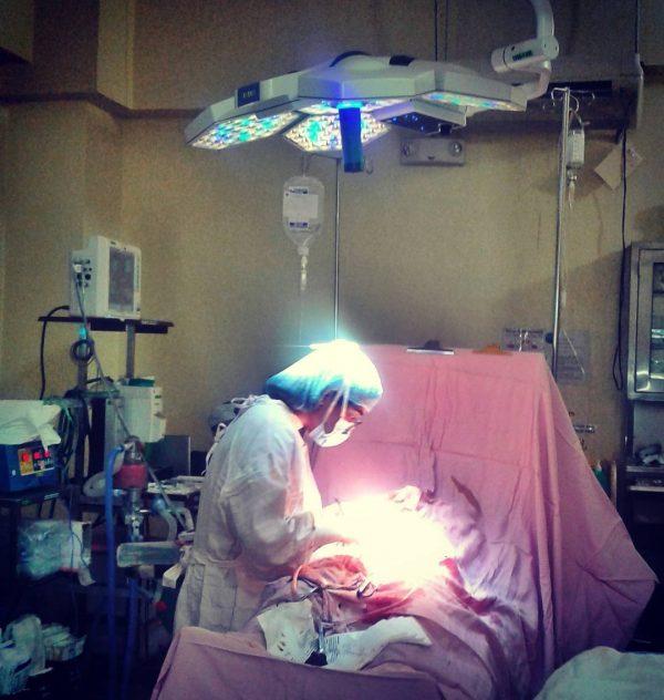 донорство матки