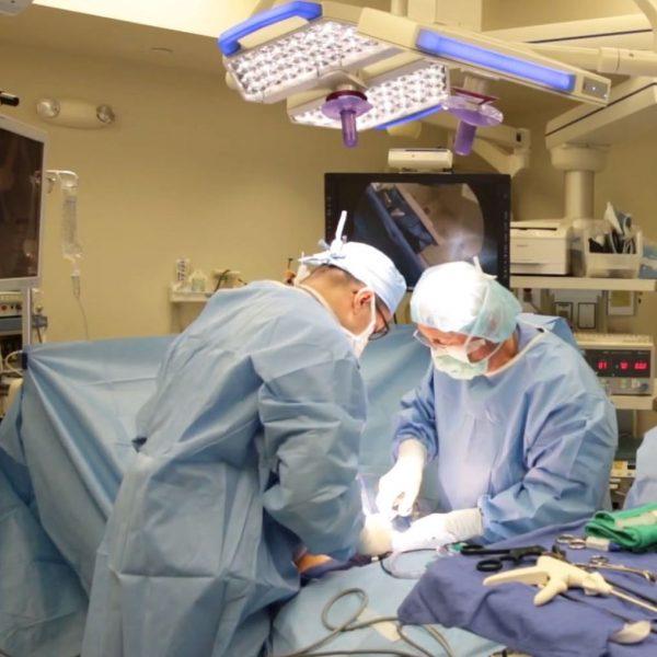 завещать органы после смерти