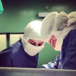 Виды трансплантации тканей и органов